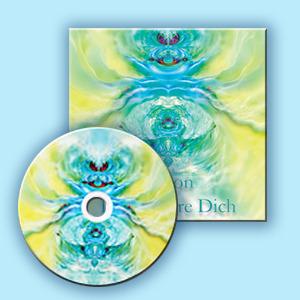 дискс коробкой 2