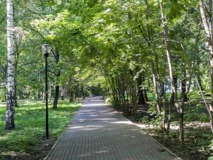 парк кулибина 3